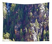 2014 Valentine Mountain Trip Tapestry