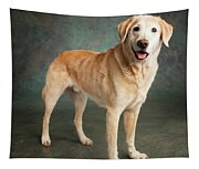 Portrait Of A Labrador Mixed Dog Tapestry
