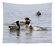 Red-breasted Merganser Tapestry