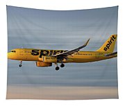 Spirit Airlines Airbus A320-232 Tapestry