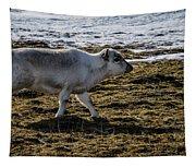 Svalbard Reindeer Tapestry