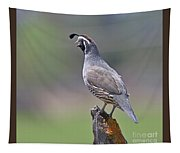 California Quail Tapestry