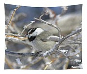 Mountain Chickadee Tapestry