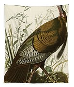 Wild Turkey  Tapestry