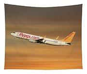 Pegasus Airlines Boeing 737-82r Tapestry