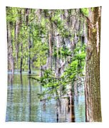 A Beautiful Day In The Bayou Tapestry