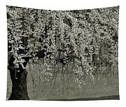 A Single Cherry Tree In Bloom Tapestry