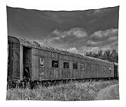 Abandoned Railroad Car In Rural New Brunswick Tapestry