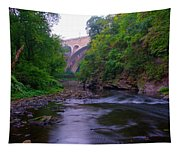 Along The Wissahickon At The Henry Avenue Bridge Tapestry