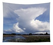 Amazing Cloud Tapestry