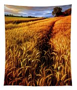 Amber Waves Of Grain Painting  Tapestry
