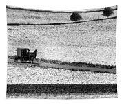 Amish Country Lancaster Pennsylvania Bw Tapestry