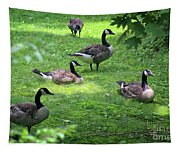 An Afternoon With Canada Geese Tapestry
