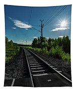 Arctic Express Tapestry
