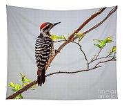 Arizona Ladderback Woodpecker Tapestry