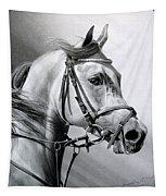 Arabian Beauty Tapestry