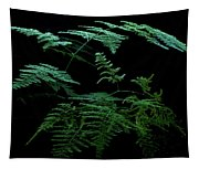 Asparagus Fern Tapestry