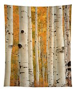 Aspens In Autumn Tapestry