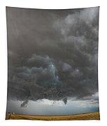 August Thunder 020 Tapestry by Dale Kaminski