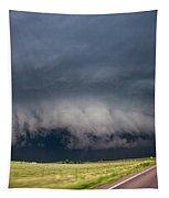 August Thunder 034 Tapestry by Dale Kaminski
