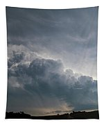 August Thunder 041 Tapestry by Dale Kaminski