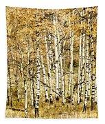 Autumn Aspen Tapestry by Brad Allen Fine Art