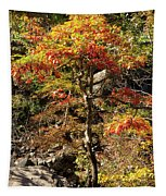 Autumn Color In Smoky Mountains National Park Tapestry