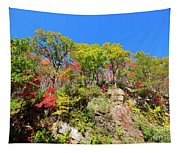 Autumn Color On Newfound Gap Road In Smoky Mountains National Park Tapestry