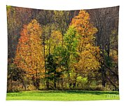 Autumn Colour In Southern Ontario Tapestry