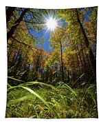 Autumn Forest Delight Tapestry