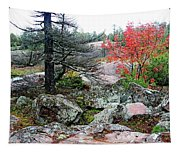 Autumn On The Rocks Tapestry