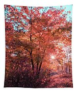Autumn Path Reimagined Tapestry