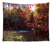 Autumn Starburst Tapestry