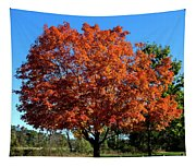 Autumnal Beauty Tapestry