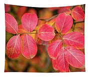 Autumnal Hues Tapestry