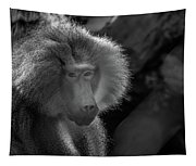 Baboon Black And White Tapestry
