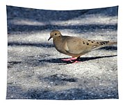 Baby Mourning Dove Tapestry