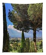 Barberini View Tapestry