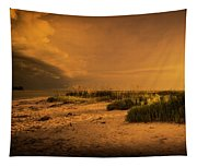 Beach Storm Front Tapestry