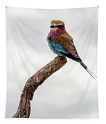 Beauty With Wings, The Lilac Breasted Roller Tapestry