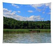 Beaver Lodge On Southern Lake Champlain New York Tapestry