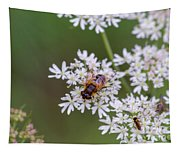 Bee Relaxing On A Flower. Tapestry