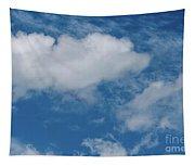 Big Sky, Little Bird Tapestry