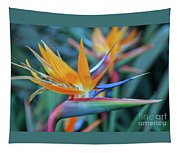 Bird Of Paradise Flowers Tapestry
