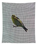 Bird Watching Reversed Tapestry