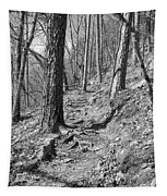 Black And White Mountain Trail Tapestry