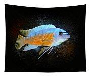 Blue Mbuna Cichlid Tapestry