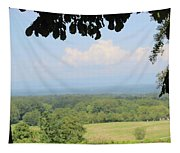 Blue Ridge Mountains And Vineyards Tapestry