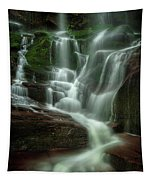 Blue Ridge Mountains Cascade Tapestry
