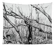 Branches In Black And White Tapestry